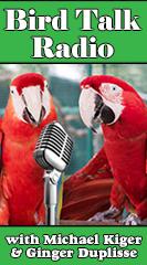 Bird Talk Radio