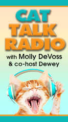 Cat Talk Radio